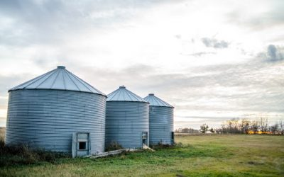 9 Ways to Prepare Your Farm for Winter